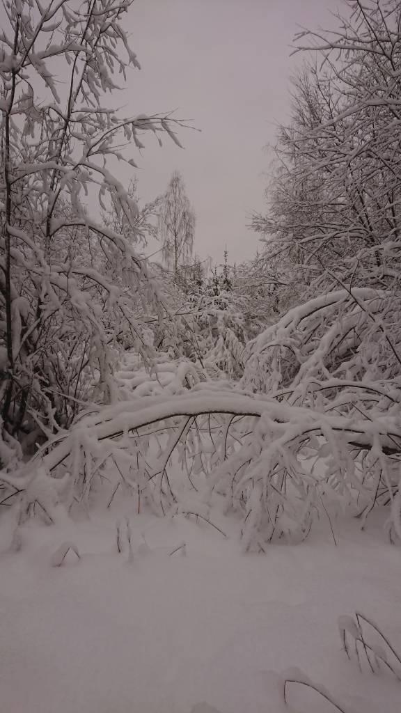 Lumen paino on teettänyt töitä rataryhmällä